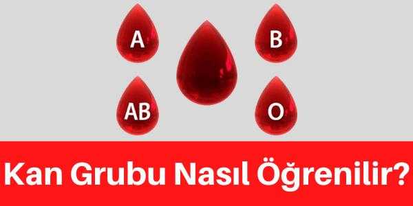kan grubu öğrenme