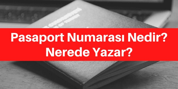 pasaport numarası nerede yazar