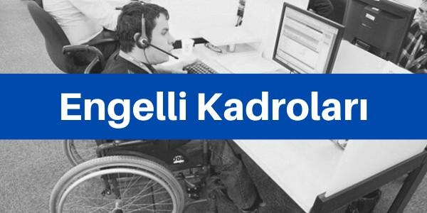 devlet engelli kadroları