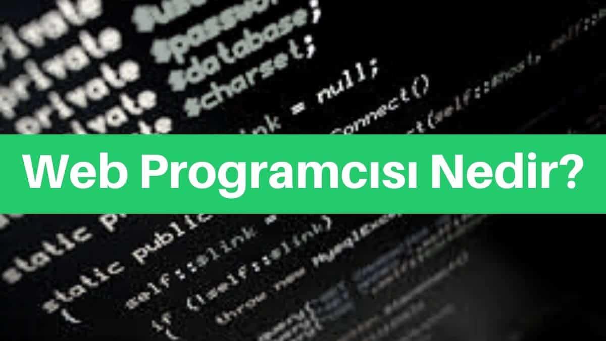 web programcısı nedir